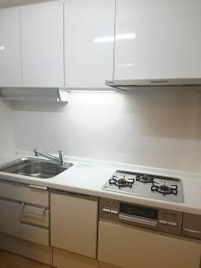 ビルトイン食洗機を取り付けたキッチン ラクシーナ